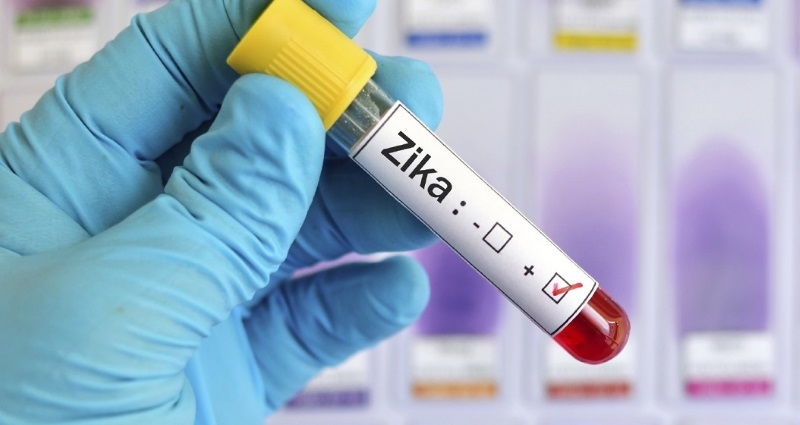 4 Zika Virus Stocks That Could See Big Gains